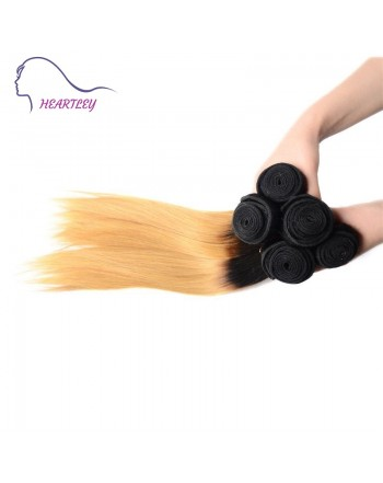 Indian-ombre-straight-hair-extensions-a