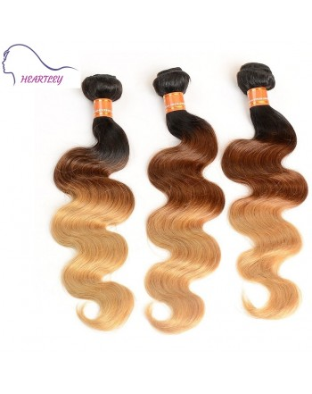 3-color-ombre-brazilian-hair-weaves-b